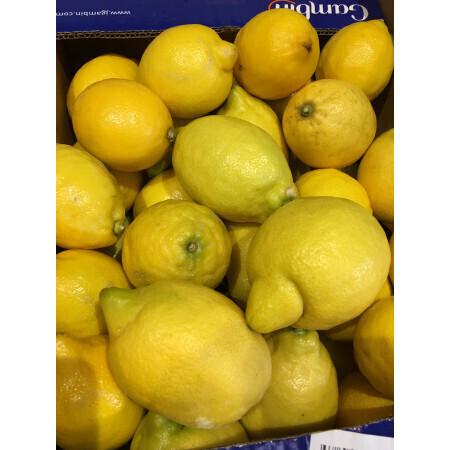 Citron Bio - Sicile
