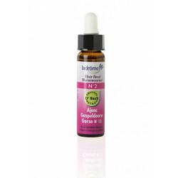 Elixir floral bio N°2 Ajonc
