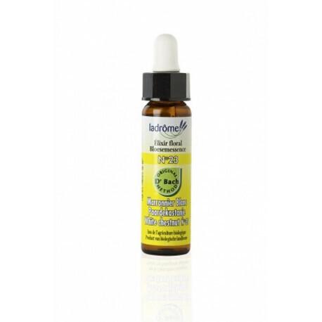 Elixir floral bio N°23 Marronnier blanc