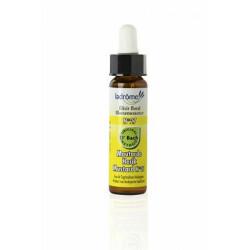 Elixir floral bio N°27 Moutarde