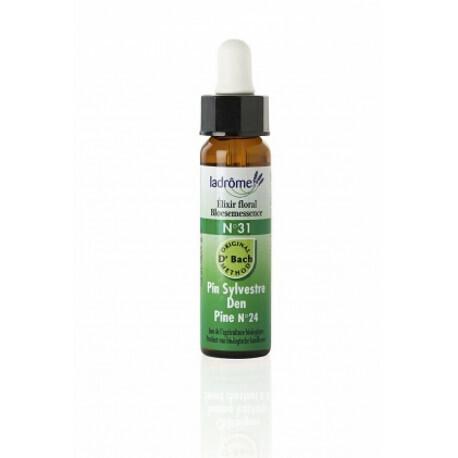 Elixir floral bio N°31 Pin