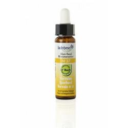 Elixir floral bio N°37 Verveine