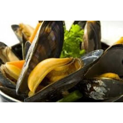 Moules de hollande