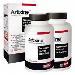 ARTIXINE - Souplesse et confort musculaire - Lot de 2 soit 4 semaines de traitement